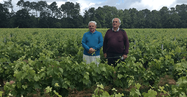 Wijnverhaal Chateau Bertrand Braneyre 1