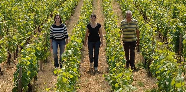 Wijnverhaal Domaine de Seguinot Chablis - 1