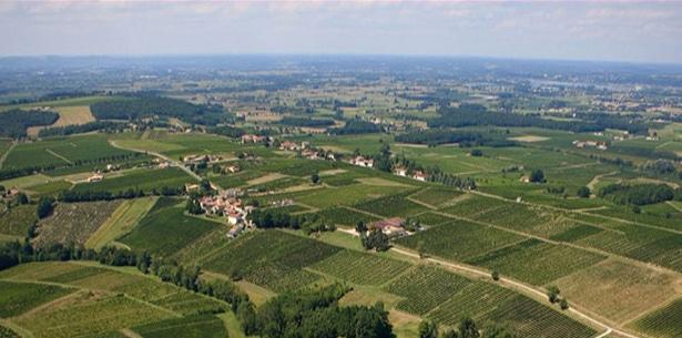 Wijnverhaal Domaine de Grange Neuve Monbazillac - 1