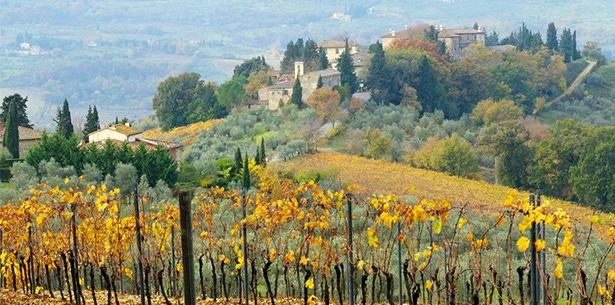 Wijnverhaal Collezione di Paolo - 2
