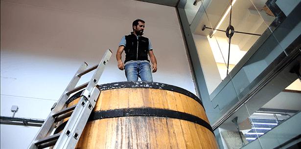 Wijnverhaal Pico Cuadro