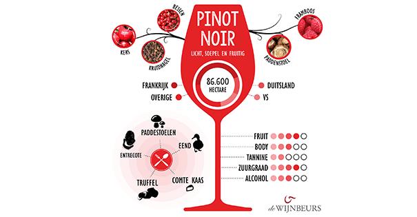 Wijnverhaal Mon Reve Pinot Noir 1