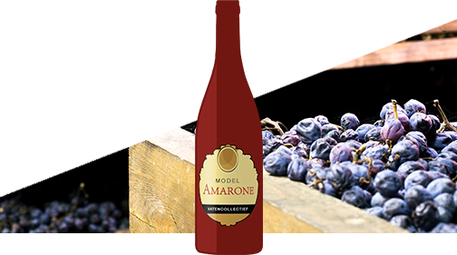 model Amarone Vatencollectief