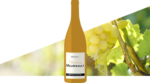 model Meursault Vatencollectief